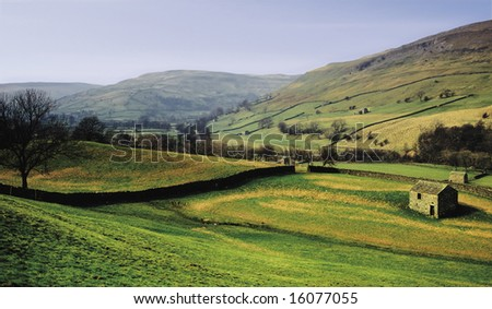 eu europe uk united kingdom great britain england dry stone walls sheep swaledale - stock photo