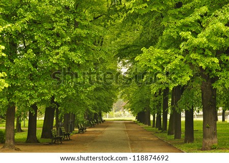 European city park with benches in spring time - stock photo