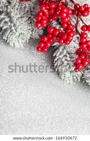 european holly and fir-tree, shallow DOF - stock photo