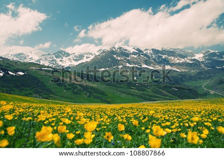 European landscape - stock photo