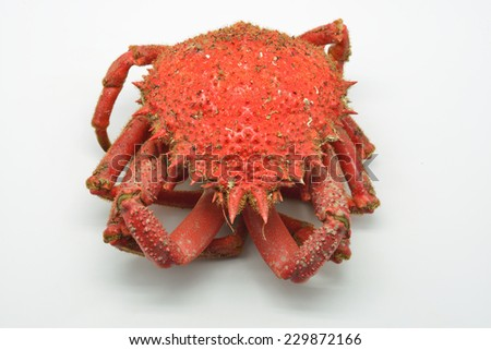 European spider crab, spiny spider crab or spinous spider crab cooked. Maja squinado isolated in white background - stock photo
