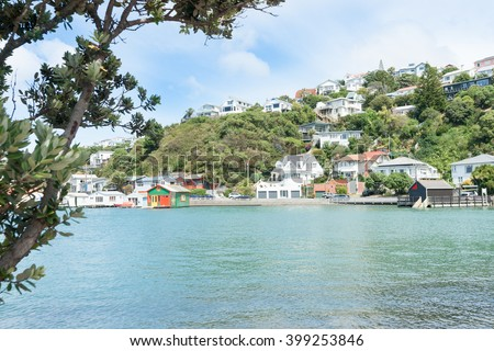 Evans Bay Wellington scenery homes and colorful  harborside buildings and boat sheds framed on left by pohutukawa tree