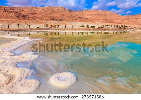 Evaporated salt out of the water with beautiful patterns. Lowering the water level in the Dead Sea - stock photo