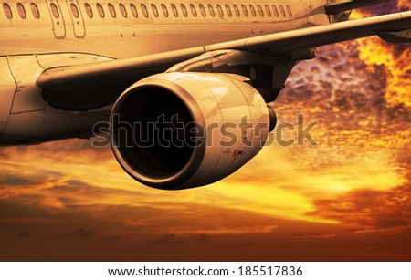 Evening flight - stock photo