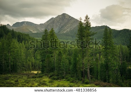 Evening in the Altai mountains