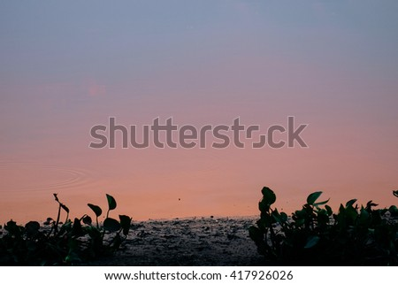 Evening Lake - stock photo
