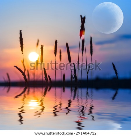evening lake scene - stock photo
