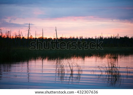 Evening landscape nature sunset river trees bushes shrubs