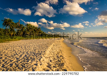 Evening light at the beach in Naples, Florida. - stock photo