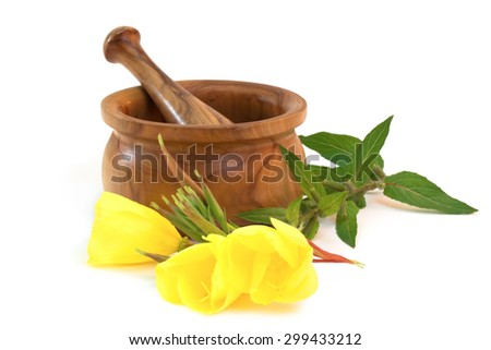 Evening primroses near wooden mortar and pestle on white background  - stock photo