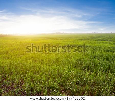 evening rural scene - stock photo