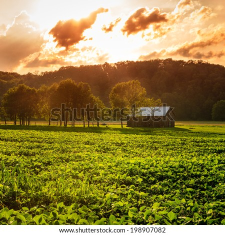 Evening scene in rural Kentucky - stock photo