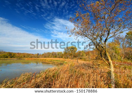 Evening sunlight on the east shoreline of Pierce Lake in Rock Cut State Park, Illinois - stock photo