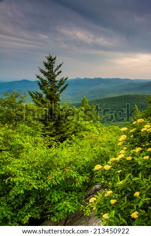 Evening view from Rough Ridge, near the Blue Ridge Parkway in North Carolina. - stock photo