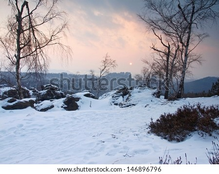 Evening view through birch branches, over gulch to opposite sandstone rocks and pink sunset.  - stock photo