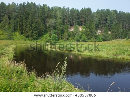 Evergreen forest with river, Tver region, Russia