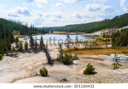 Evergreen Pines and Water at Yellowstone National Park - stock photo