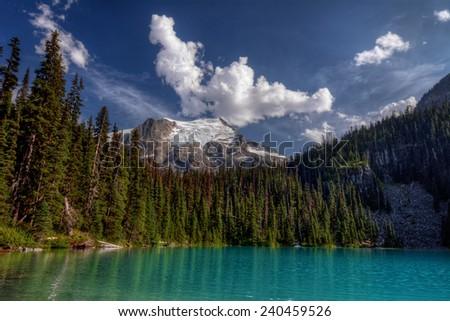 Evergreen trees along calm mountain lakeside - stock photo