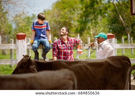 Everyday life for farmer with cows. Peasant work in South America with livestock in family country ranch. Happy grandfather, father and son relaxing and smiling.