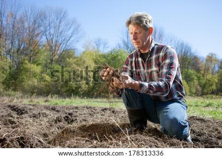 Examining Soil - stock photo