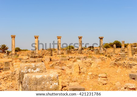 Excavations of Volubilis, an excavated Berber and Roman city in Morocco, ancient capital of the kingdom of Mauretania. UNESCO World Heritage - stock photo