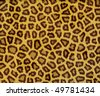 excellent leopard fur - stock vector