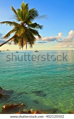 Excellent sunset view with a big stones and palmtree, Seychelles, La Digue island
