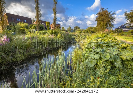 Excessive rainwater discharge draining canal with natural vegetation on the banks serving as an ecological connection in the urban area of Soest, Netherlands - stock photo