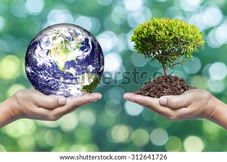 Exchange planet and tree in saving world concept, Elements of this image furnished by nasa. - stock photo