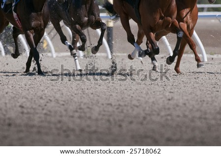 Exciting motion blur of speeding race horses - stock photo