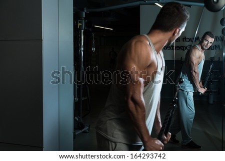 Exercise For Triceps With Cable. Fit Man On The Triceps Pull down Weight Machine At A Health Club - stock photo