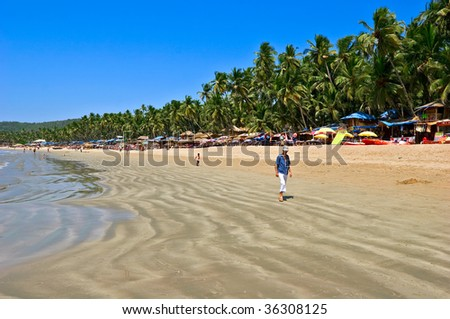 Exiting Palolem beach panorama on low tide with white wet sand and green coconut palms, Goa, India - stock photo