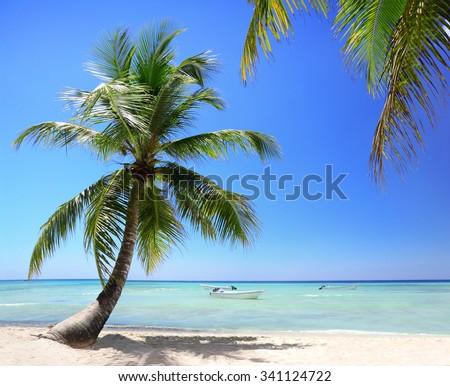 Exotic Beach in Dominican Republic, Saona Island  - stock photo