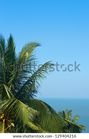 Exotic, beautiful and secluded beach with palm trees in the foreground and the sea. - stock photo