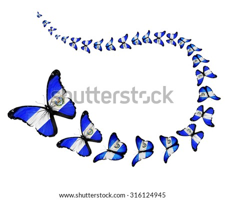 Exotic El Salvador Flag Butterflies Flying Stock Illustration