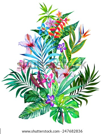 Exotic flowers. Large tropical bouquet isolated on white. Watercolor illustration  - stock photo