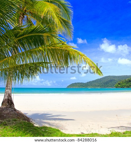 Exotic palm trees on white sand beach. Luxury resort.