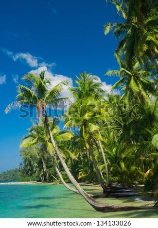 Exotic Paradise Idyllic Island - stock photo