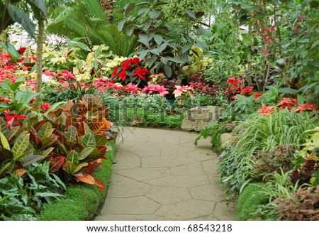 exotic plants - stock photo