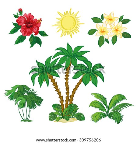 Exotic Set, Sun, Palm Trees, Hibiscus and Plumeria Flowers, Green Plants and Leaves Isolated on White Background.  - stock photo