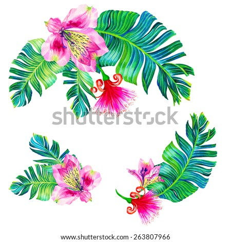 "exotic tropical flowers. a set of tropical floral elements. 3 colorful bouquets with palm, orchid, and ""brush tree"" flower. gorgeous realistic botanical illustration.  - stock photo"