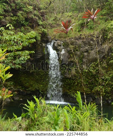 Exotic tropical waterfall and foliage in Maui, Hawaii - stock photo