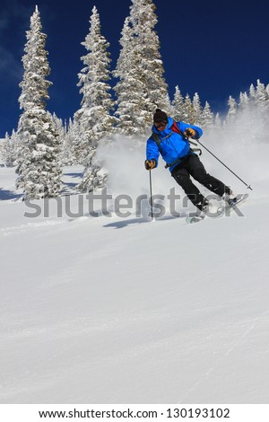 Expert male skier in powder snow with frosted pine trees in the background, Utah, USA. - stock photo