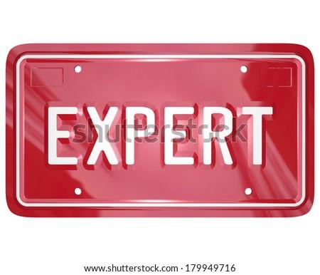 Expert Word License Plate Mechanic Technician Engineer Skills - stock photo