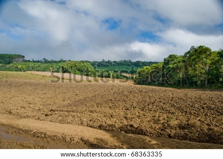Exposed soil on forest converted to agricultural production area in southern Brazil. - stock photo
