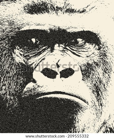 Expressive face of a gorilla male, severe silverback. The great ape, most dangerous and biggest monkey of the world. Great for user pic, icon, label or tattoo. Amazing illustration in grunge style. - stock photo