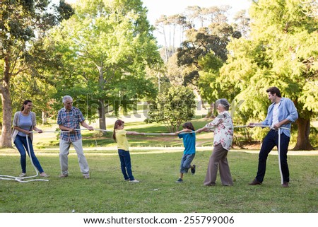 Extended family having tug of war on a sunny day - stock photo