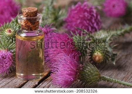 Extract of burdock close-up on a table in a glass bottle horizontal  - stock photo