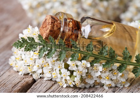 extract of yarrow in a bottle with flowers on the table. horizontal   - stock photo