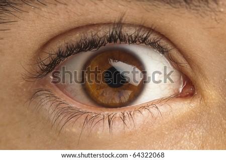 extreme closeup of brown eye of boy - stock photo
